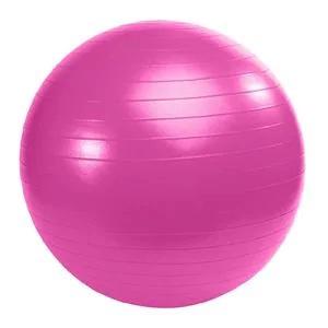 Swiss Ball - Gym ball